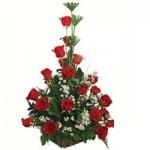 ... 24 rosas